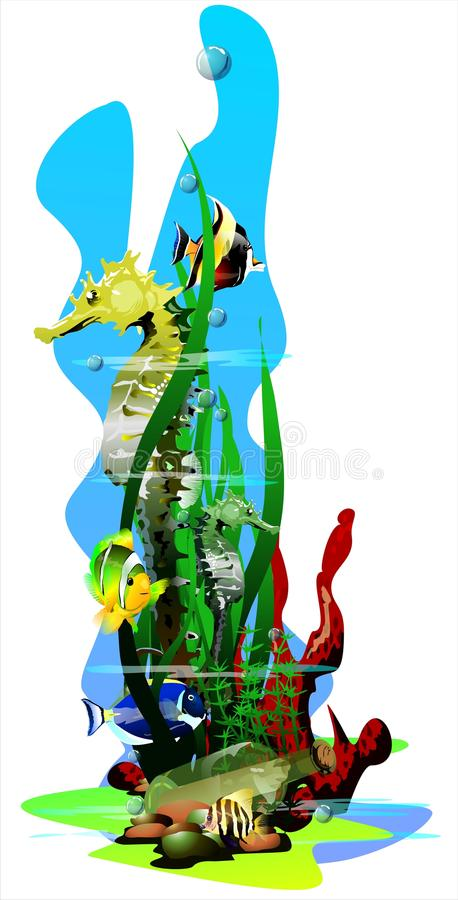 The bottle at the bottom of the sea. (Vector) stock illustration