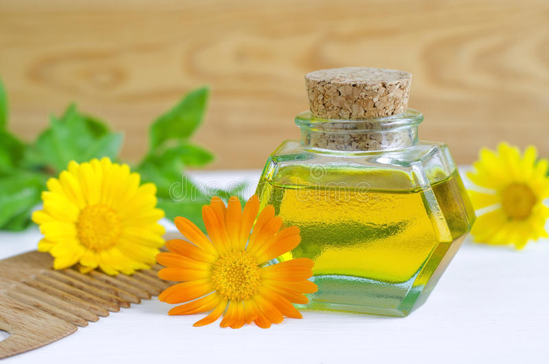 Bottle of calendula oil and wooden hair comb (Pot marigold extract, tincture, infusion). Small bottle of calendula oil and wooden hair comb (Pot marigold extract royalty free stock image