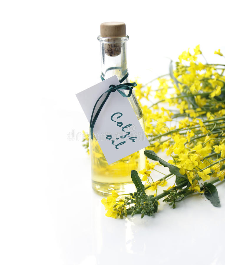 Bottle of colza oil royalty free stock photography