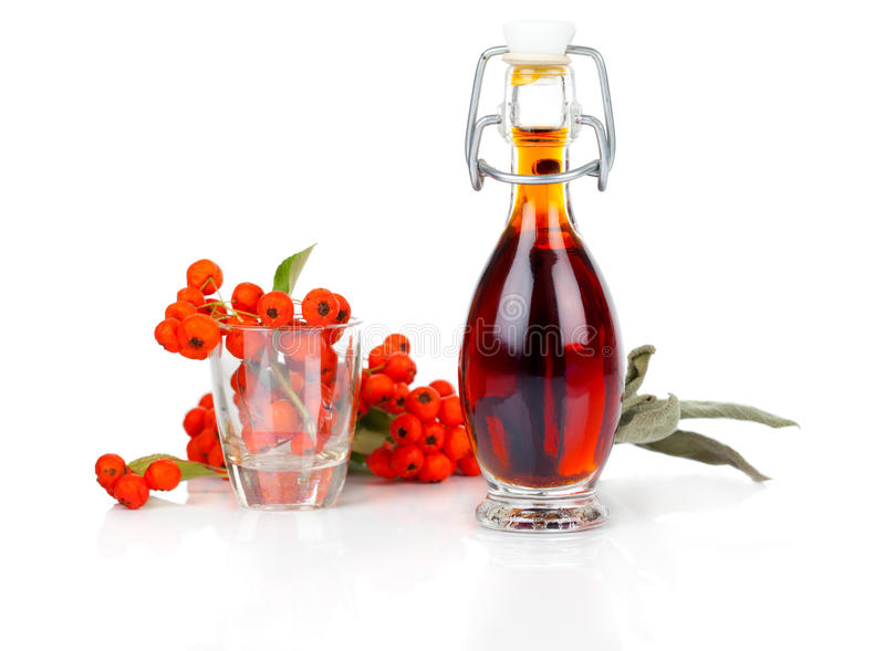 Bottle of drink. Mixture with ashberry on white background royalty free stock photo