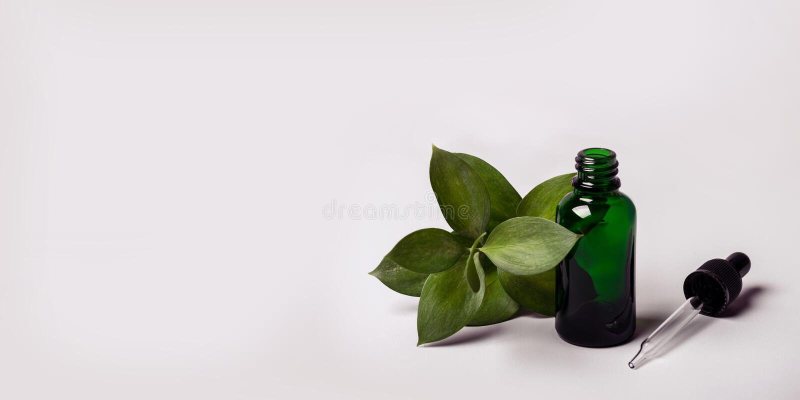Bottle Essence Oil and green twig. Health Ecology concept royalty free stock photo