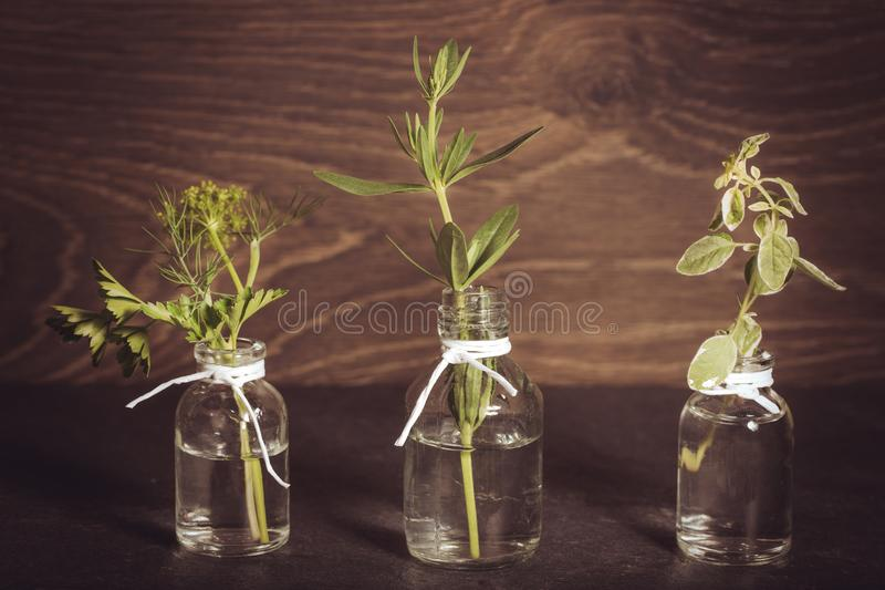 A bottle of essential oil with herbs, parsley, thyme, dill, hyssop, set on an old wooden background. Cooking, alternative medicine stock photo