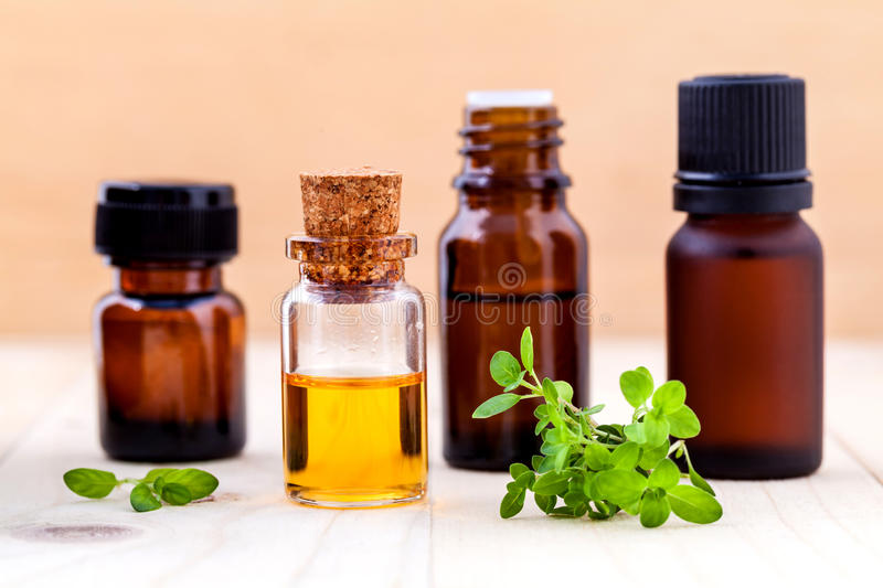 Bottle of essential oil and lemon thyme leaf . stock photo