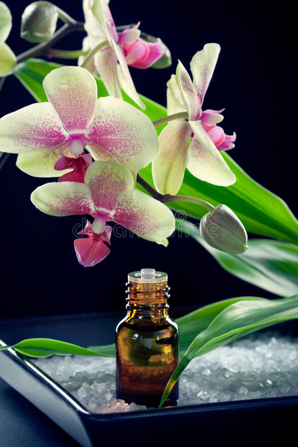 Download Bottle Of Essential Oil With Orchid Flowers Stock Images - Image: 22642614