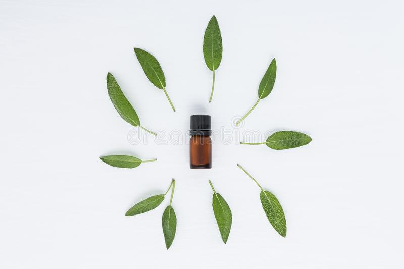 Bottle Of Essential Oil And Herbal Medicine With Fresh Herbs