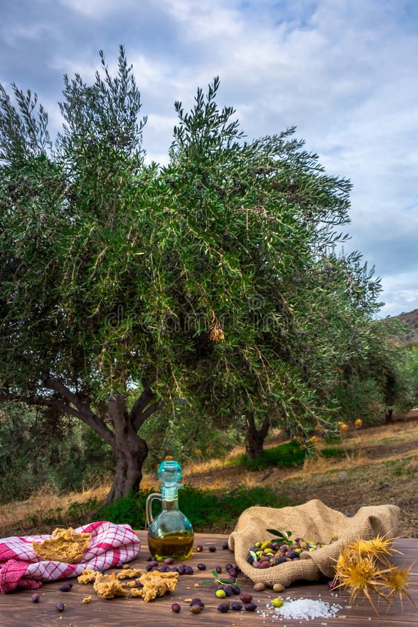 Bottle with extra virgin olive oil, olives, a fresh branch of olive tree and cretan rusk dakos close up on wooden table. stock images