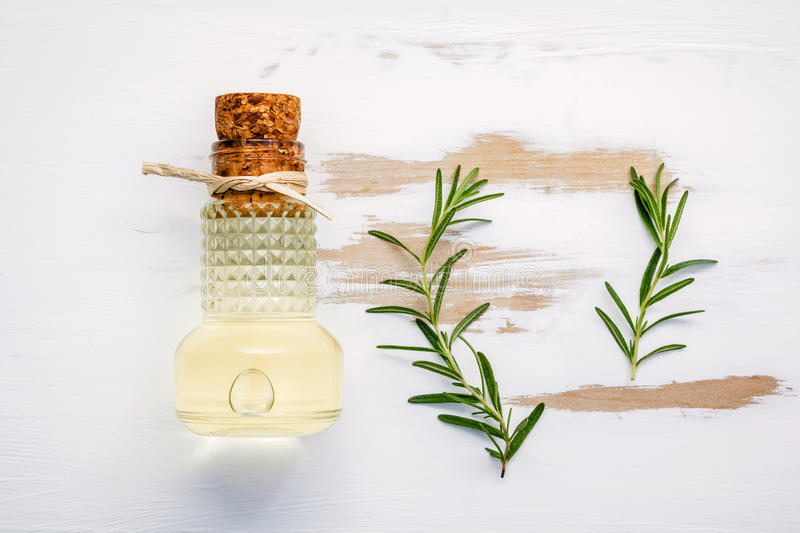 Bottle of extra virgin olive oil with rosemary. Sprigs of rosemary and olive oil set up on white shabby wooden background . Fresh royalty free stock photo