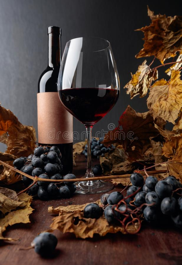 Bottle and glass of red wine on a table with dried vine leaves and blue grapes. Selective focus royalty free stock photography
