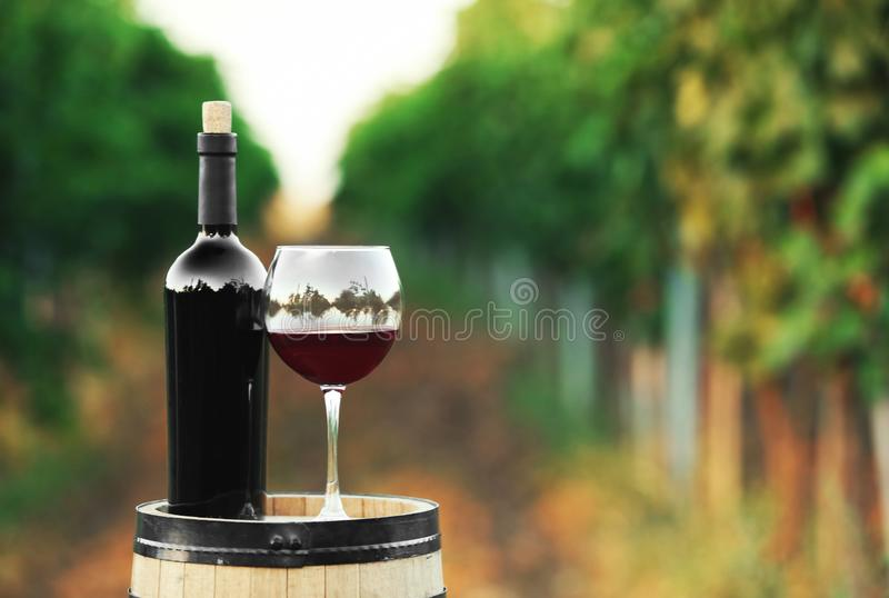 Bottle and glass of red wine on wooden barrel. In vineyard stock photos