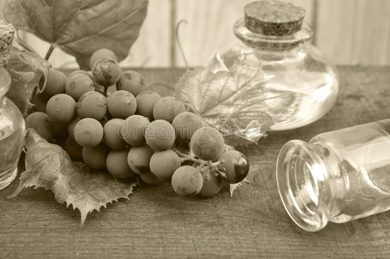 Bottle with grape seed oil on rustic background. Monochrome photo. Fruit, antioxidant stock photo
