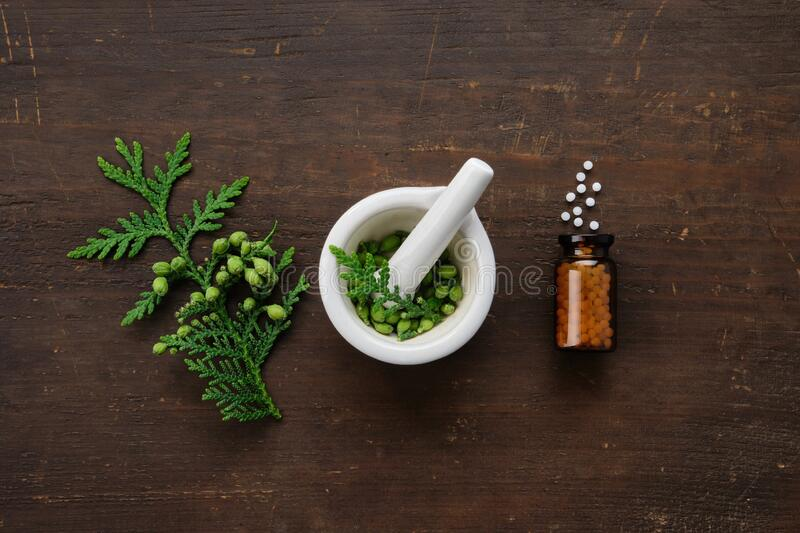 Bottle of homeopathic globules. Thuja occidentalis twigs and mortar. Homeopathy medicine concept. stock photo