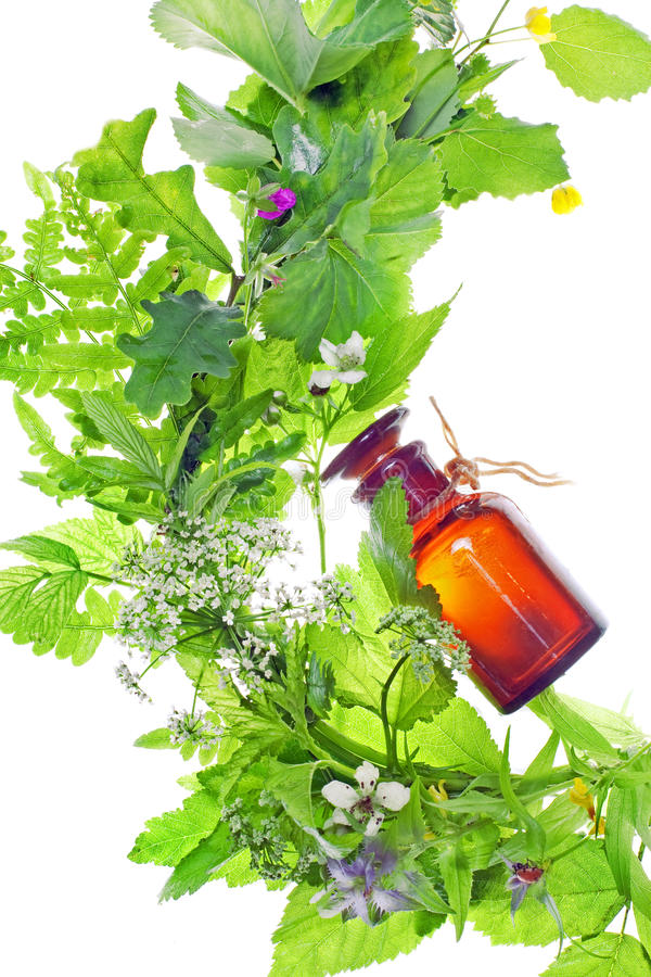 Download Bottle With Homeopathy Balm Stock Photo - Image of inflorescence, group: 14727482