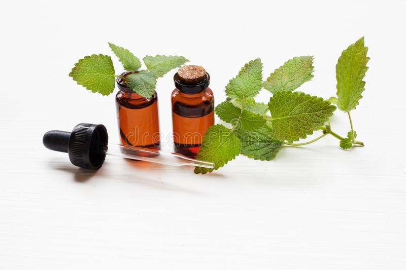 A bottle of melissa lemon balm essential oil with fresh leaves. royalty free stock photos