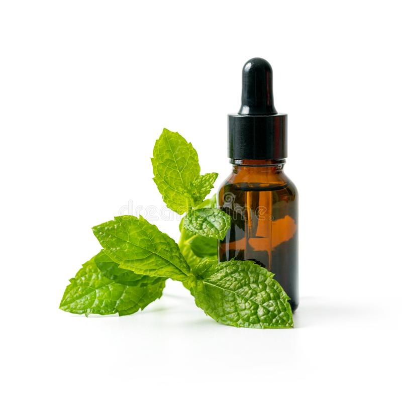 bottle with mint essential oil and green leaf on white background royalty free stock photo