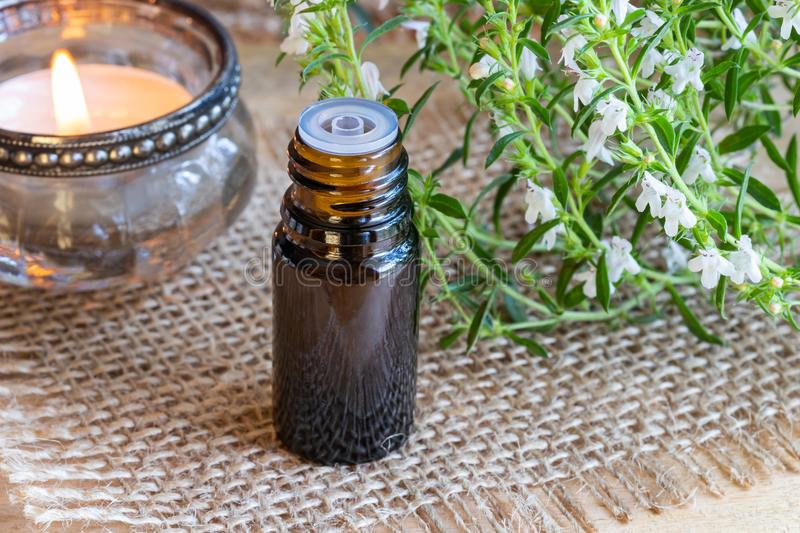 A bottle of mountain savory essential oil with fresh blooming Sa. Tureja montana twigs royalty free stock image
