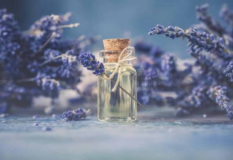 Bottle of natural cosmetic lavender oil, hair and body treatment. Toned vintage stock image
