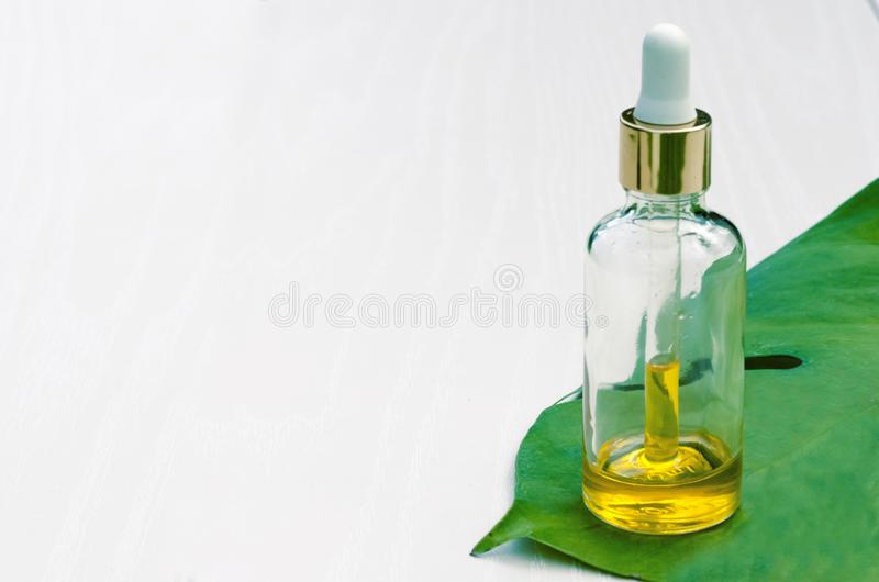 Bottle with natural cosmetics and organic extract, serum, essential massage oil for skin care on a green leaf on a white spa royalty free stock photos