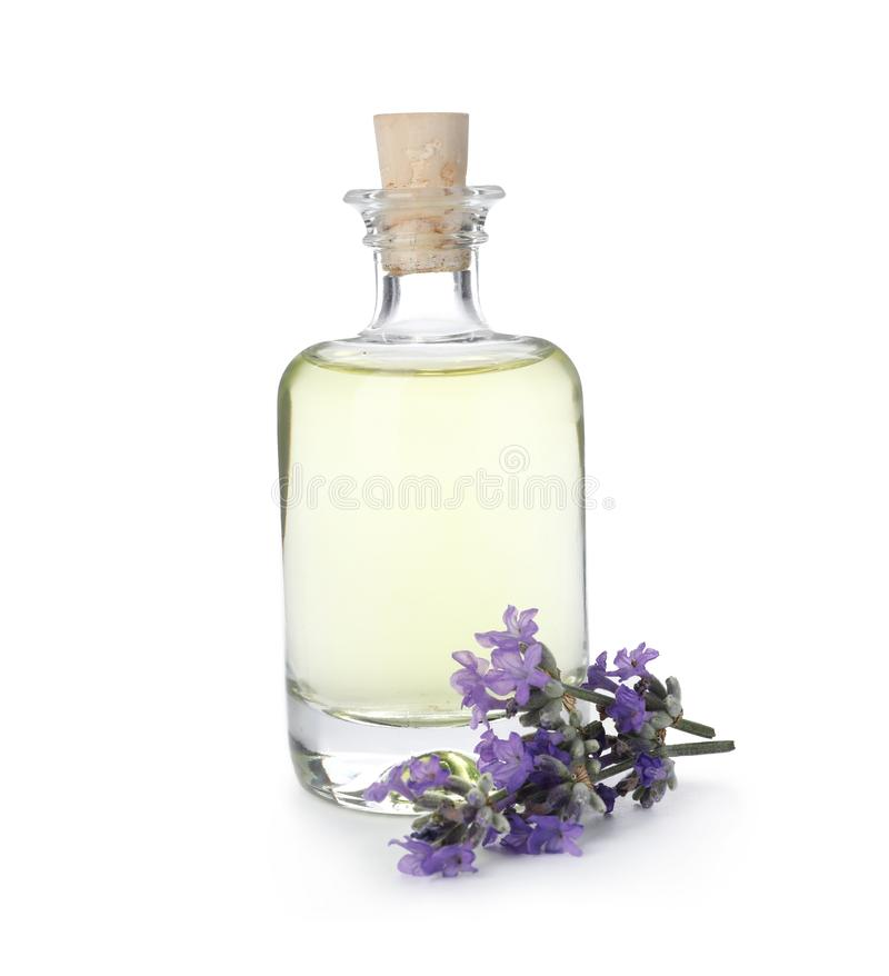 Bottle with natural lavender oil and flowers on white royalty free stock photo