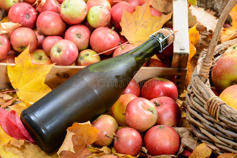 Bottle of Normandy Cider, with many apples. A bottle of Normandy Cider, with many apples and basket stock images