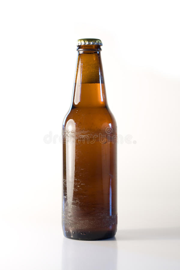 Free Bottle Of Beer Stock Photography - 12534182