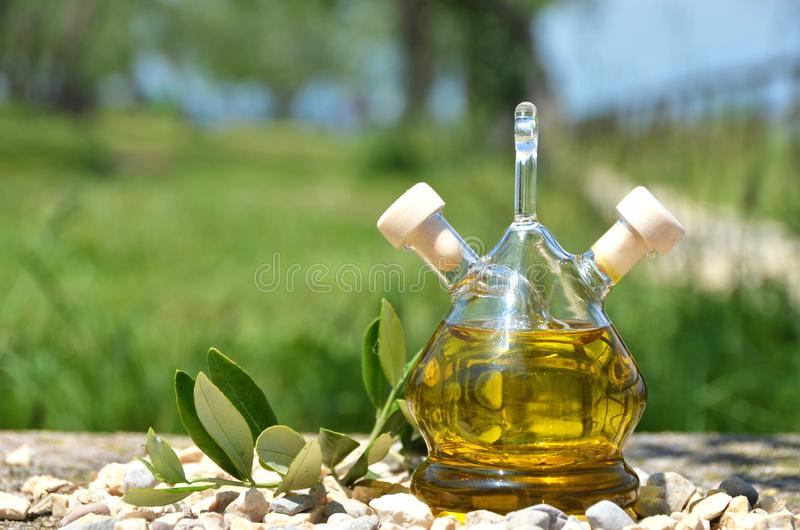 Bottle of olive oil in the olive grove royalty free stock photos