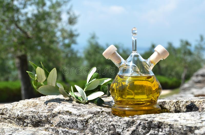Bottle of olive oil in the olive grove stock images