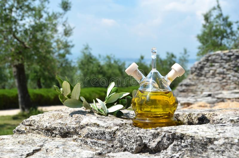 Bottle of olive oil in the olive grove stock photography