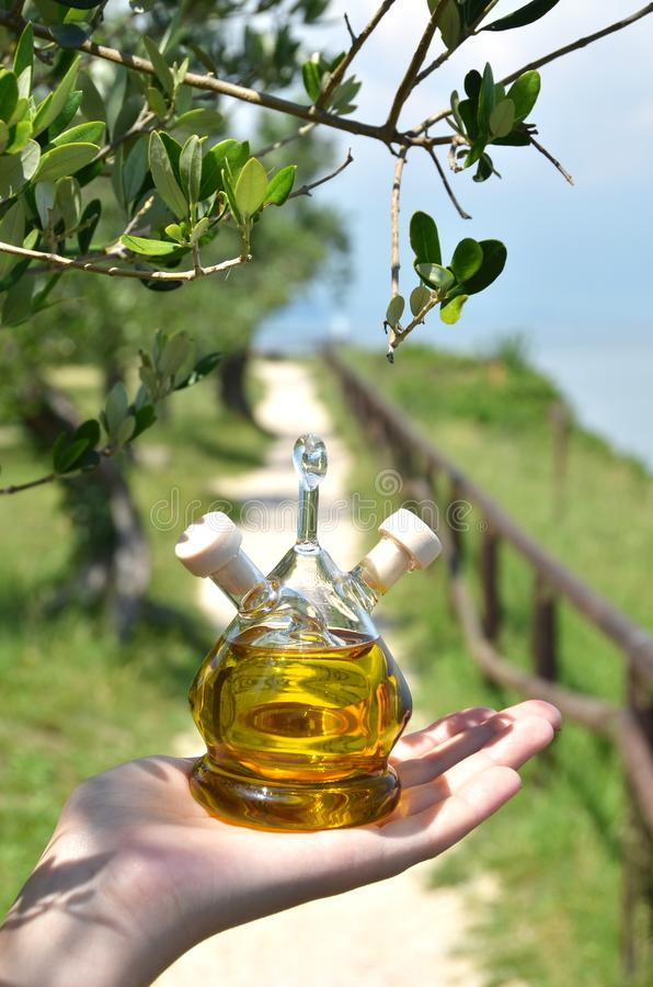 Bottle of olive oil in the olive grove stock photos