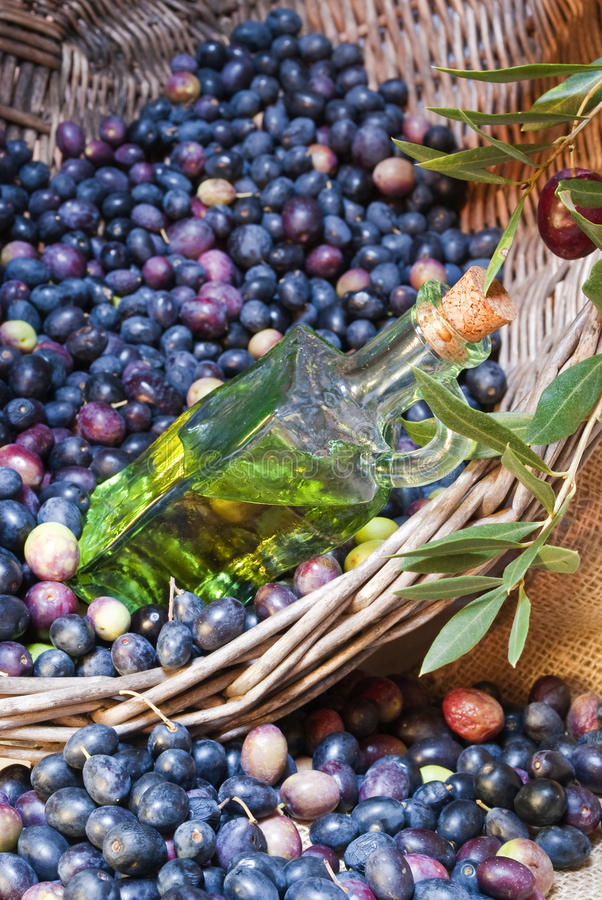 Bottle Of Olive S Oil Stock Images