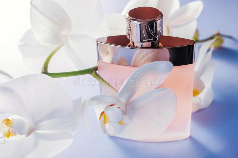 Bottle of perfume with white orchid royalty free stock photography