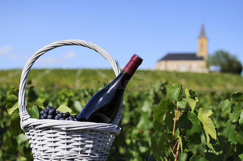 Bottle of red wine in countryside royalty free stock photos