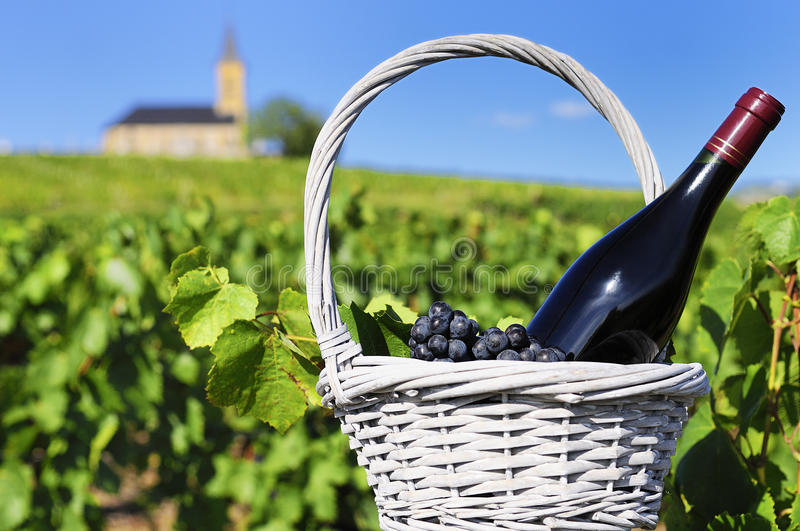 Bottle of red wine in countryside stock images