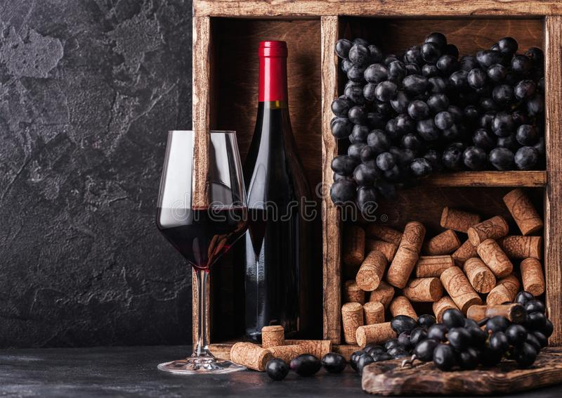 Bottle of red wine with dark grapes and corks inside vintage wooden box on black stone background. Elegant wine glass with stock photography