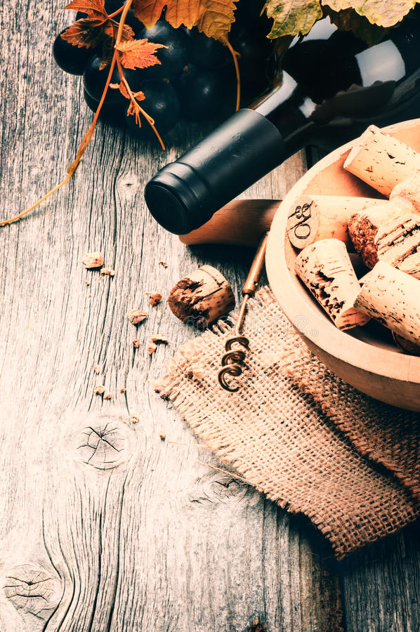 Bottle of red wine with fresh grape and bunch of corks stock images