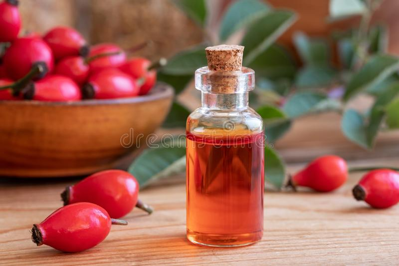 A bottle of rose hip seed oil with fresh plant stock images