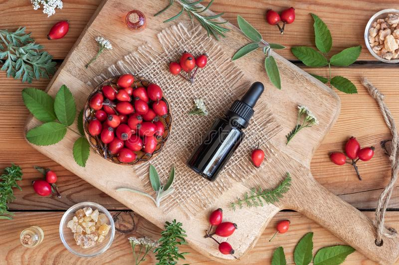 A bottle of rosehip seed oil with sage, wormwood, winter savory. And other herbs on a wooden background stock photos