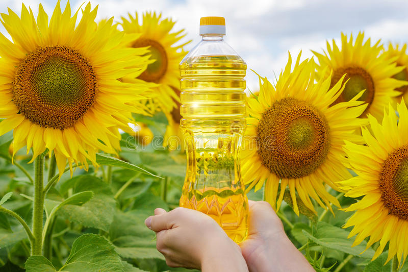 Download A Bottle Of Sunflower Oil On The Background Sunflowers Stock Image