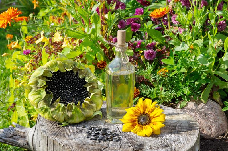 Sunflower oil in a glass Bottle and sunflowers on an stump stock images