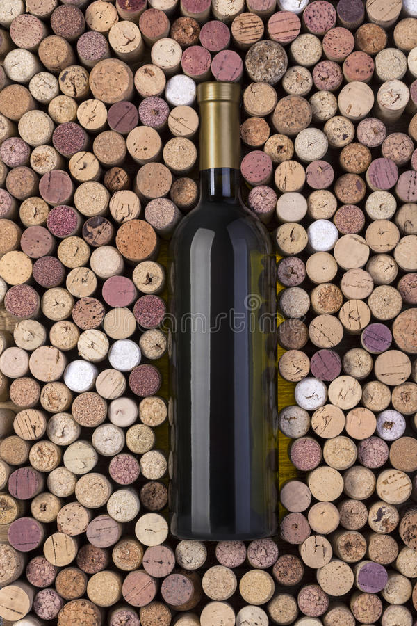 Bottle of white wine royalty free stock photos
