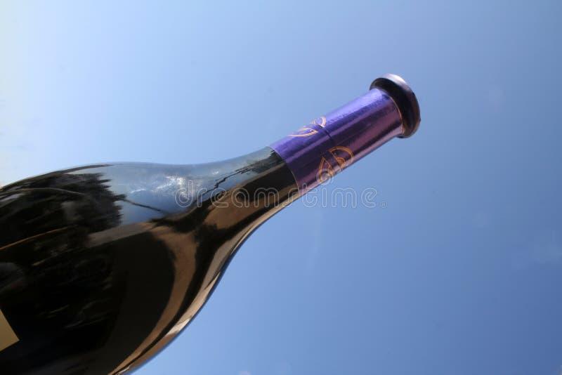 Download Bottle of wine stock photo. Image of celebration, wine - 335120
