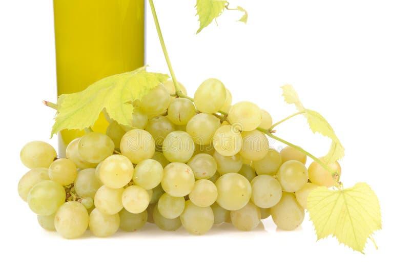 Bottle of wine with green grapes. Alcohol, background, bar, beverage, blank, cabernet, celebration, clean, clear, drink, elegance, food, full, glass, glasses stock images
