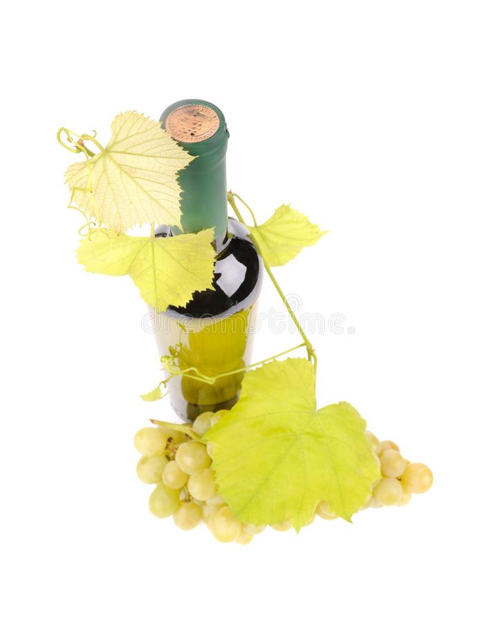 Bottle of wine with green grapes. Alcohol, background, bar, beverage, blank, cabernet, celebration, clean, clear, drink, elegance, food, full, glass, glasses stock photo