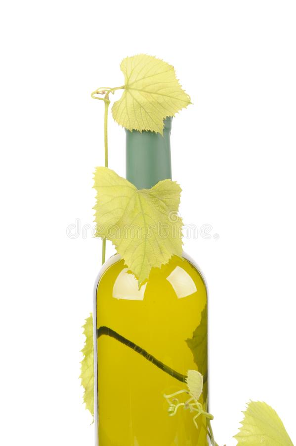 Bottle of wine with green leaf of grape. Alcohol, background, bar, beverage, blank, cabernet, celebration, clean, clear, drink, elegance, food, full, glass stock photos