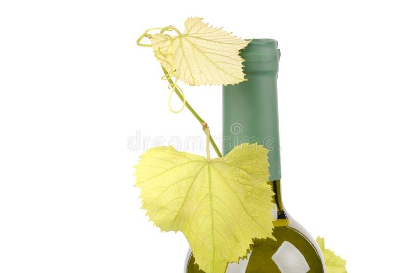 Bottle of wine with green leaf of grape. Alcohol, background, bar, beverage, blank, cabernet, celebration, clean, clear, drink, elegance, food, full, glass stock image