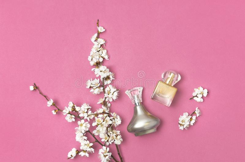 Bottle of woman perfume and branch of spring apricot cherry white flowers on bright pink background. Beauty, Perfumery, cosmetics. Spring minimal concept. Flat stock photos
