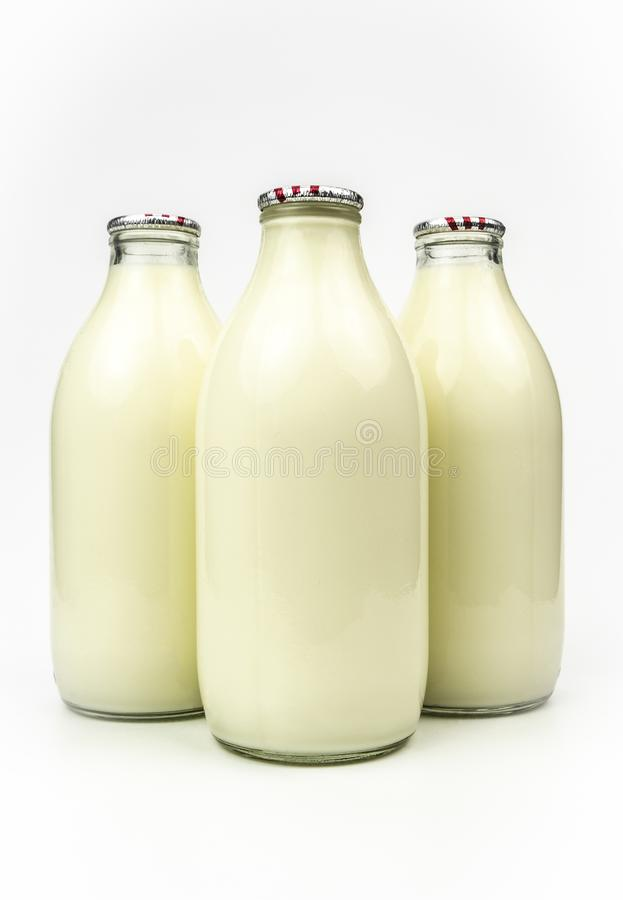 Bottled cows milk. A view of three bottles of cows milk on a plain background stock photo