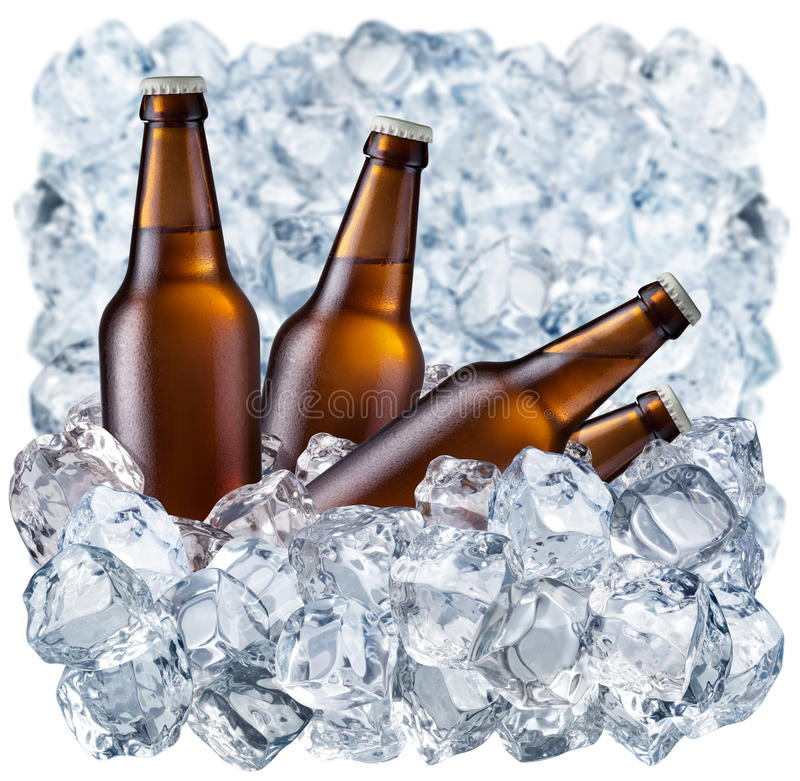 Bottles of beer. On ice royalty free stock images