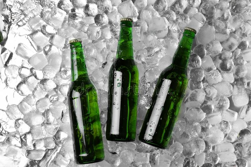 Bottles of beer on ice cubes. Flat lay royalty free stock image