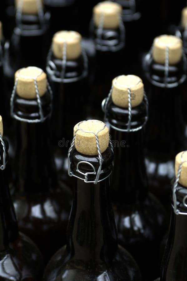 bottles cider royaltyfri fotografi