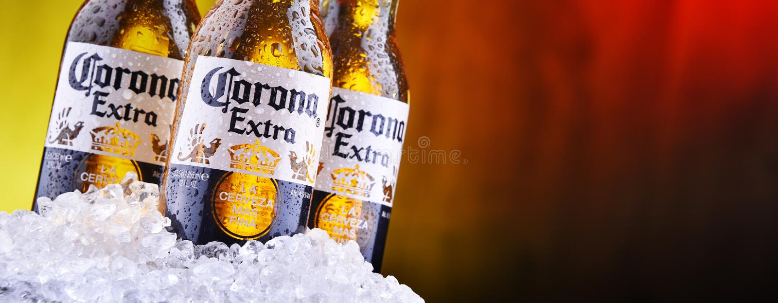 Bottles of Corona Extra beer. POZNAN, POL - AUG 22, 2019: Bottles of Corona Extra, one of the top-selling beers worldwide, a pale lager produced by Cerveceria stock photos